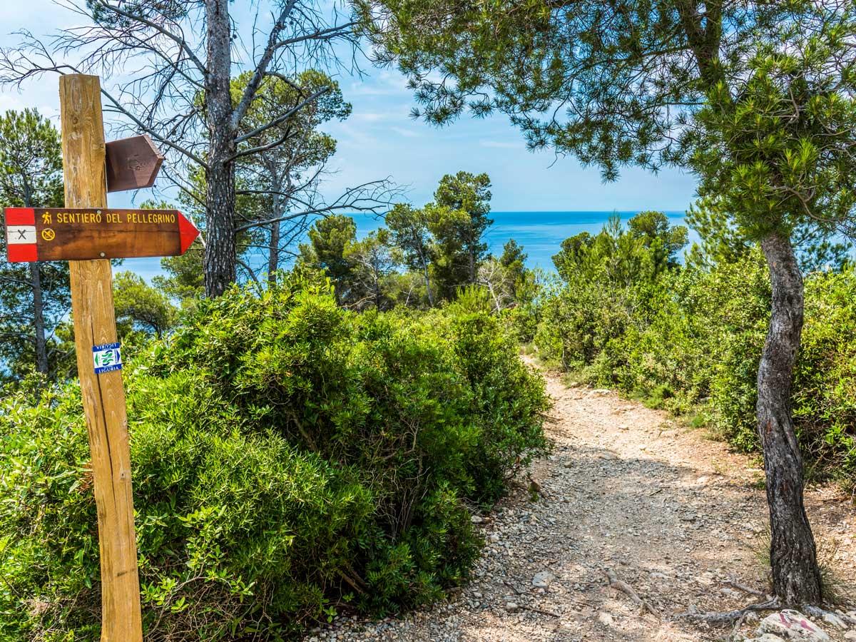Beautiful greenery along the trail of Self-guided West Liguria and Cote dAzur trek