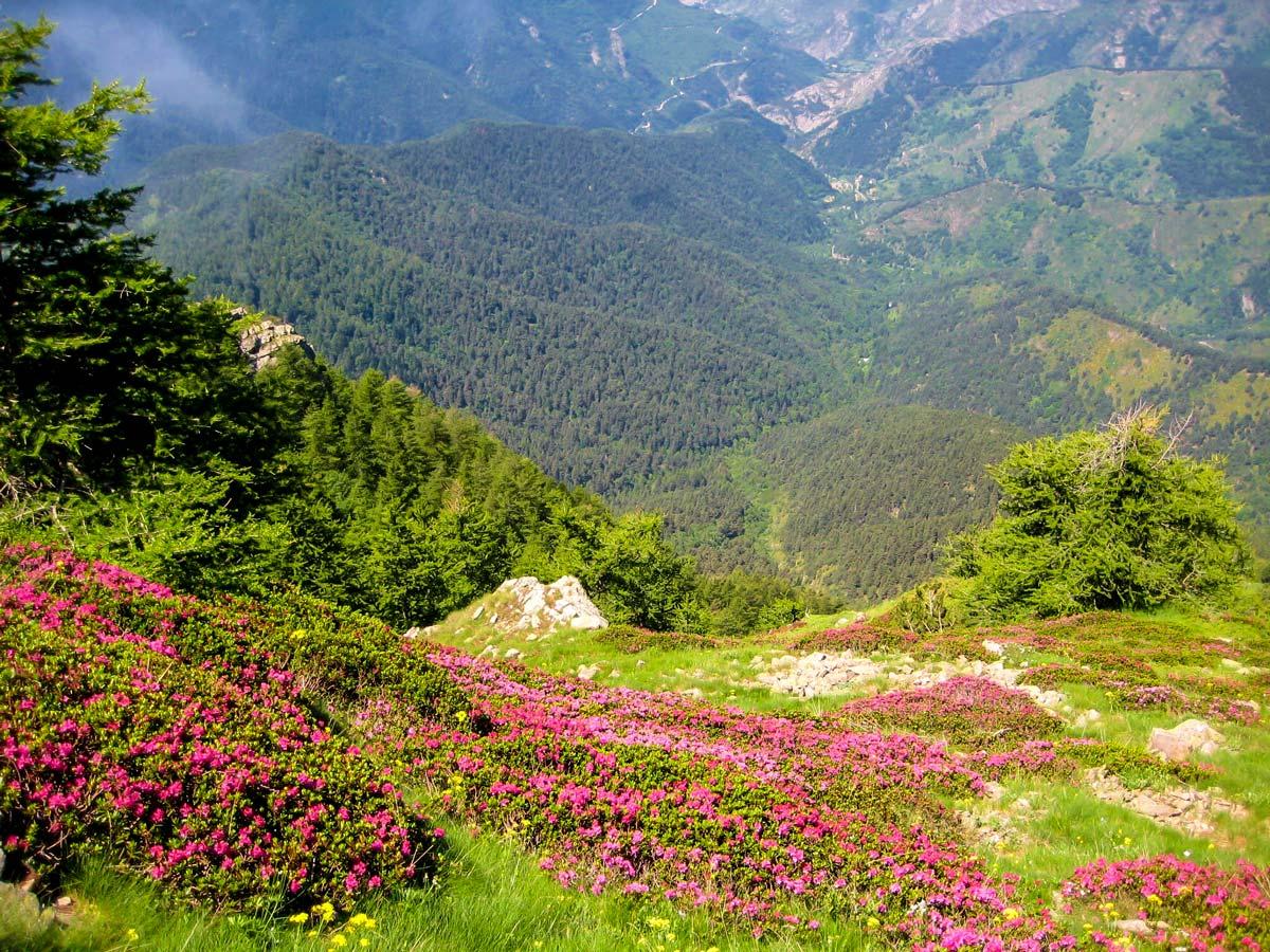 Italian Riviera is a wonderful place trek on Self-guided West Liguria and Cote dAzur trek