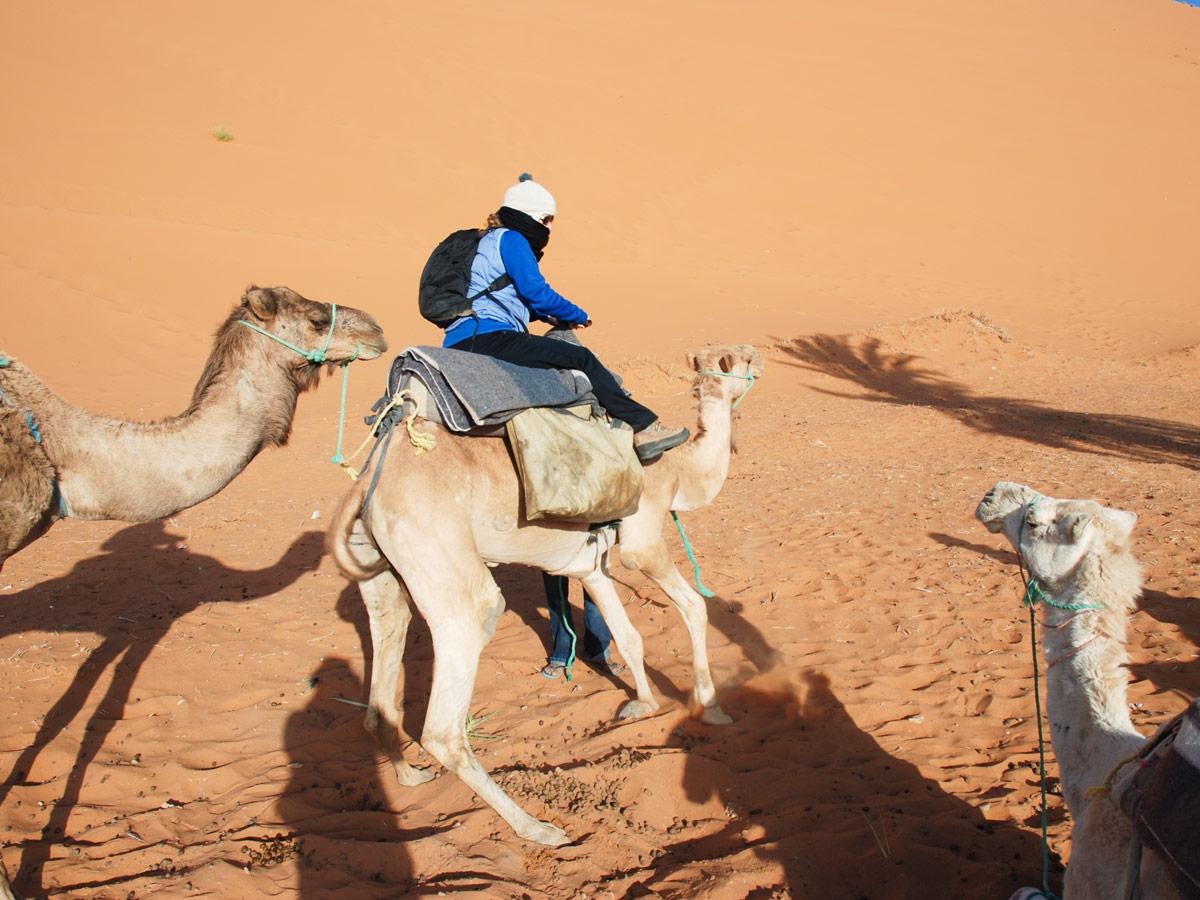 Atlas and Sahara Trek in Morocco involves fun camel riding in Sahara Desert