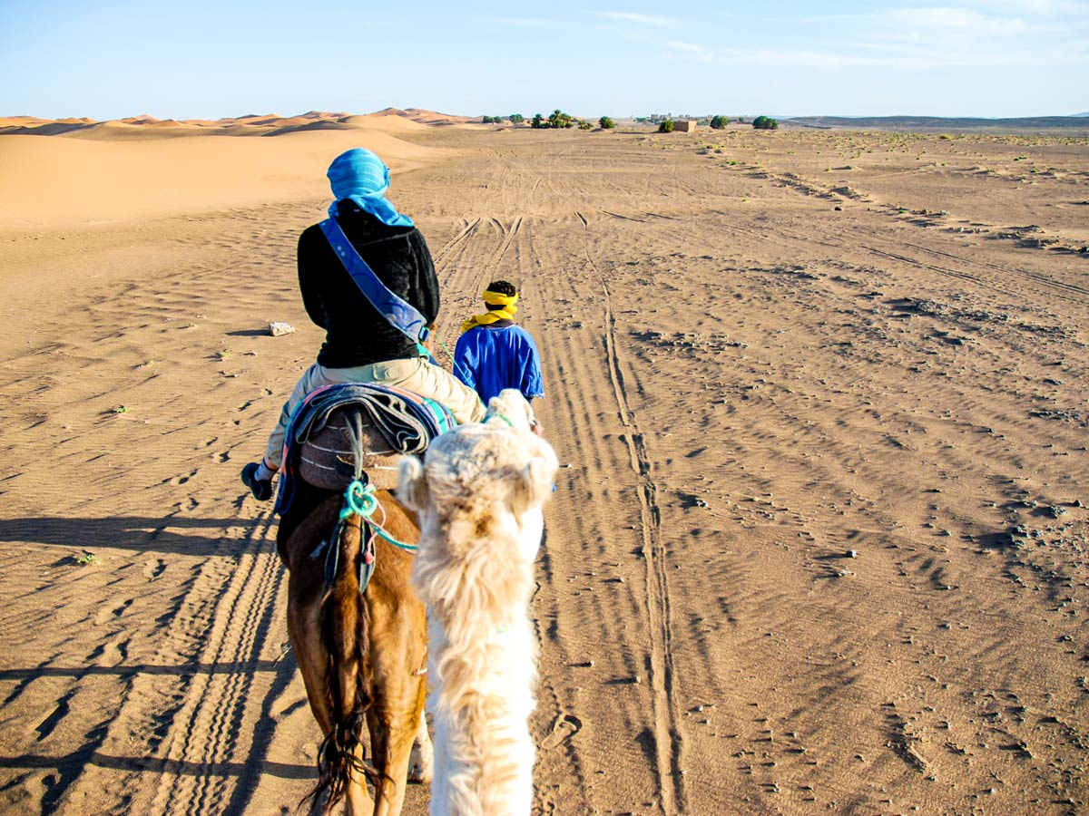 Atlas and Sahara Trek in Morocco involves several different activities including camel riding