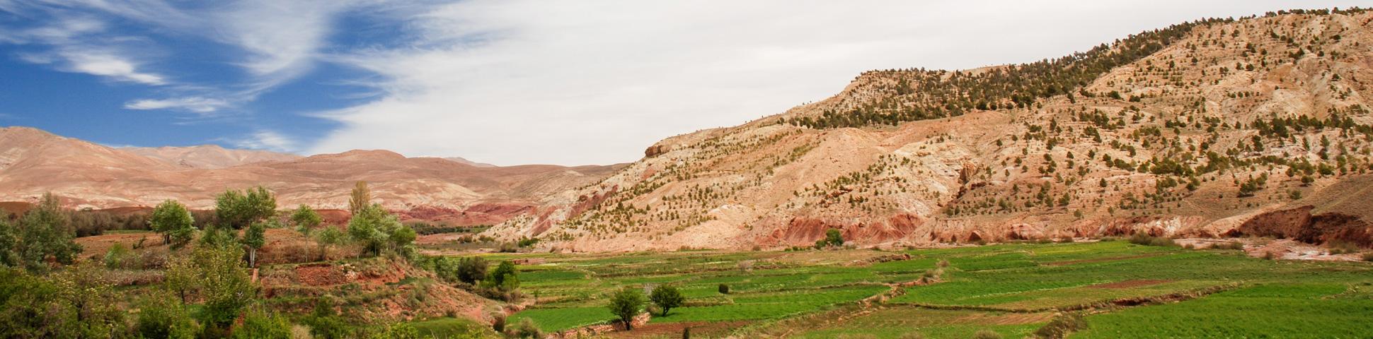 Villages, Valleys, and Toubkal Trek