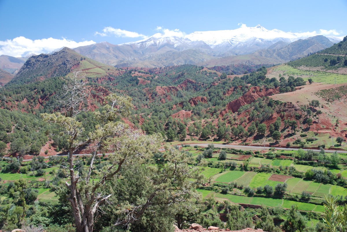 Atlas Valley trek has an amazing views of Moroccan countryside