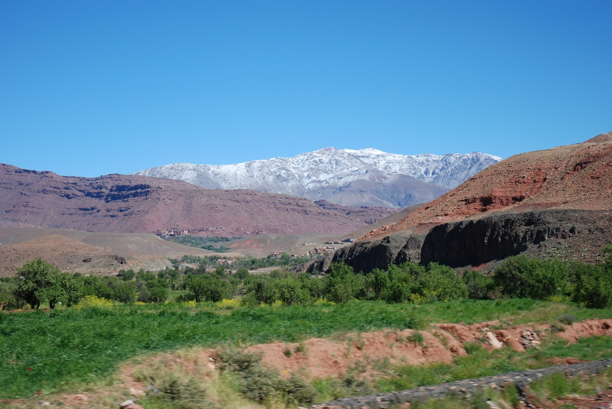 Green fields in between Atlas Mountains on guided trekking tour to Atlas Valley from Marrakech