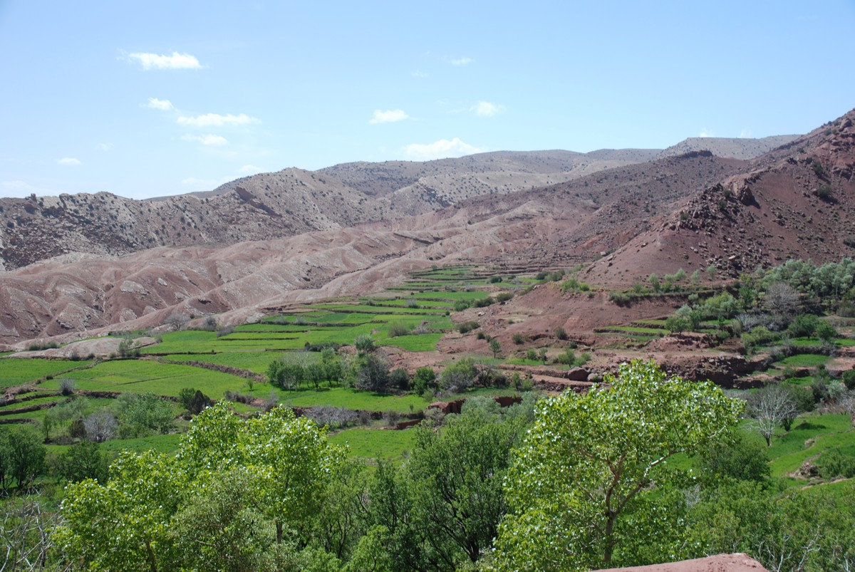 Beautiful green hills near Marrakech seen on guided trekking tour to Atlas Valley from Marrakech Morocco