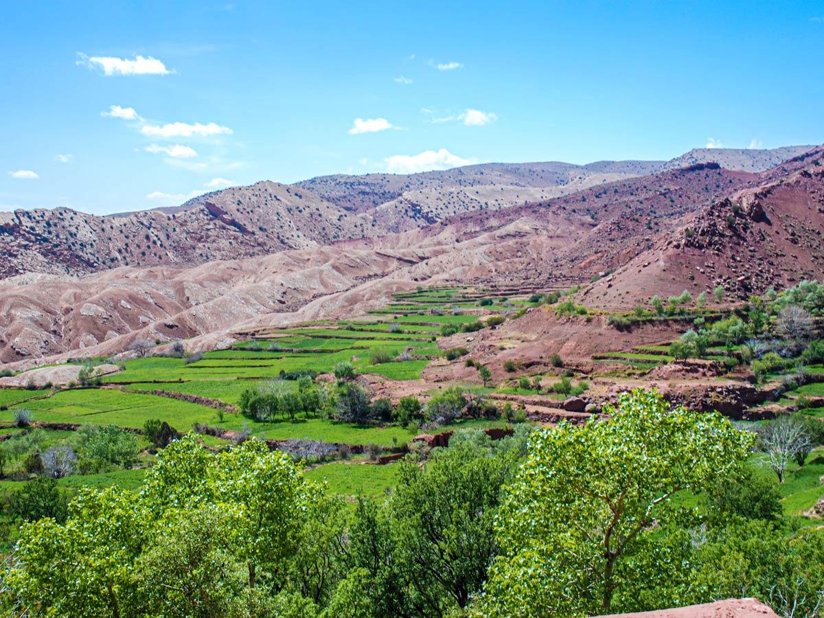Beautiful green terraces in Atlas Mountains on Mt Toubkal Circuit Trek in Morocco