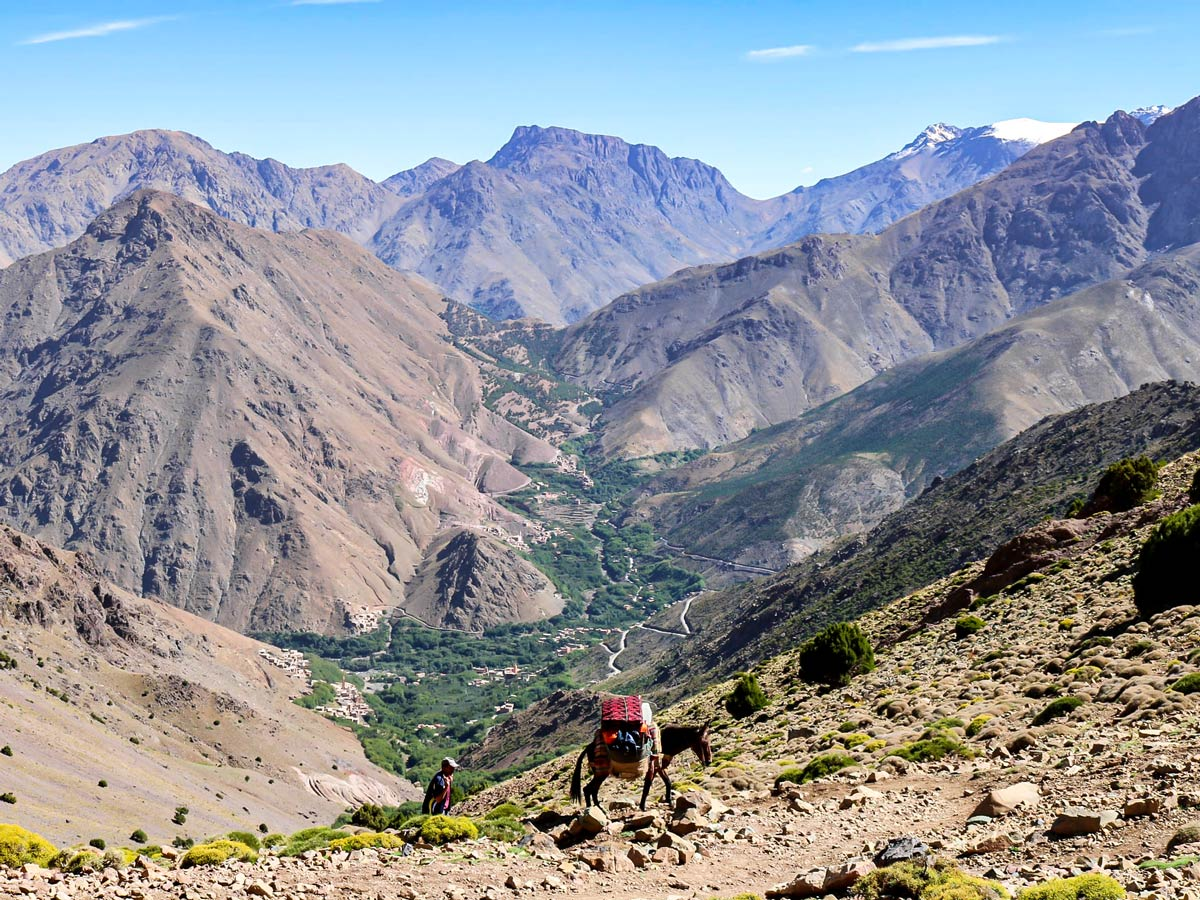 Donkey and Atlas Valley on Mt Toubkal Circuit Trek in Morocco