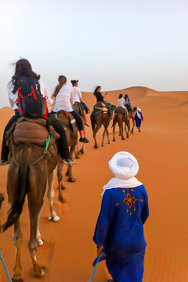 Guide of Merzouga Overland Tour in Morocco with the group riding camels