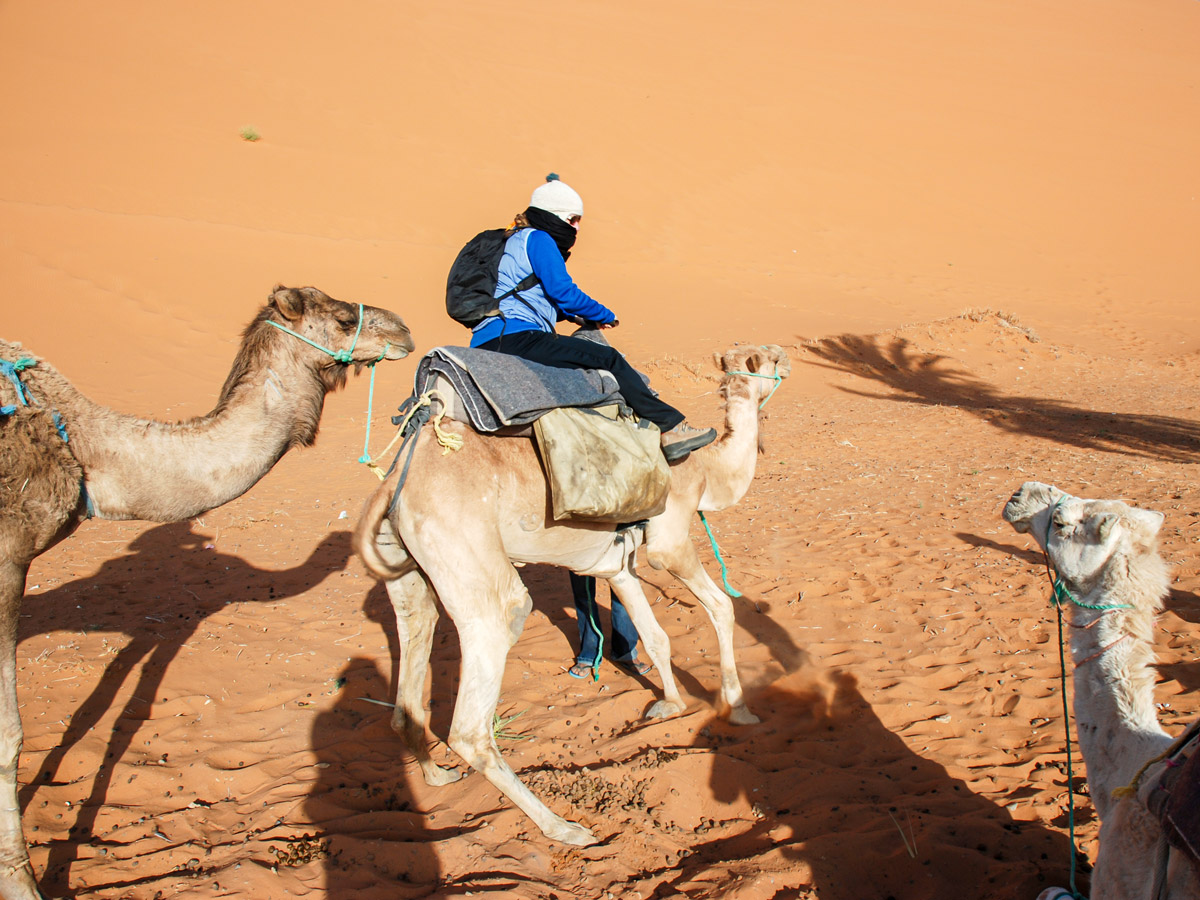 Riding camels on Merzouga Overland Tour in Morocco is a popular attraction