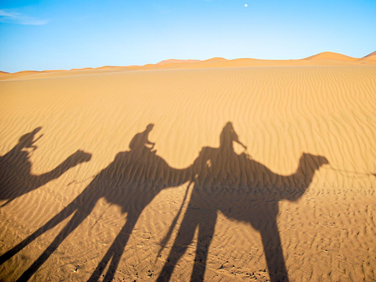 Expansive desert on Merzouga Overland Tour in Morocco