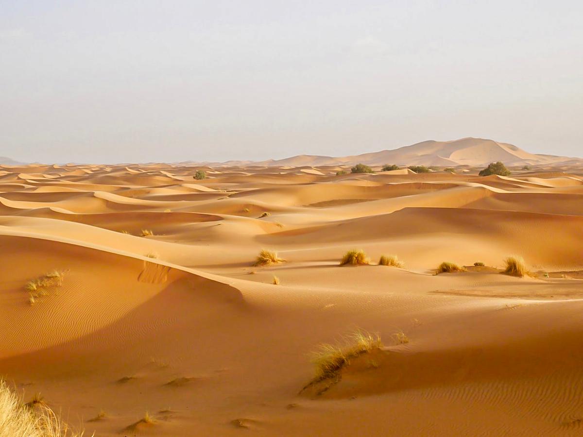 Expansive desert seen on Merzouga Overland Tour in Morocco