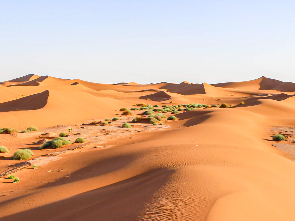 Taking a Merzouga Overland Tour is a wonderful way of exploring the Sahara Desert in Morocco