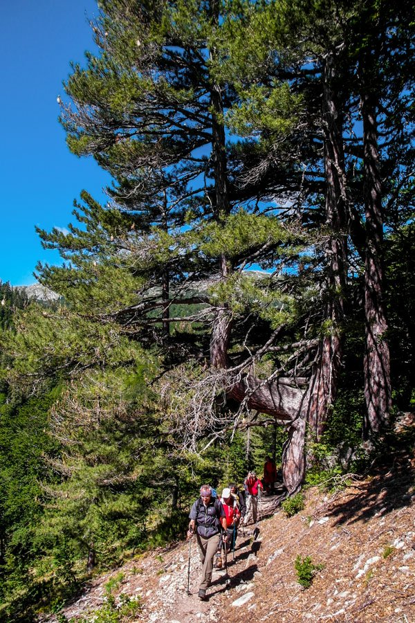 Group of hikers between Capanelle and Bocca di Verde on 3rd day of GR20 Trek