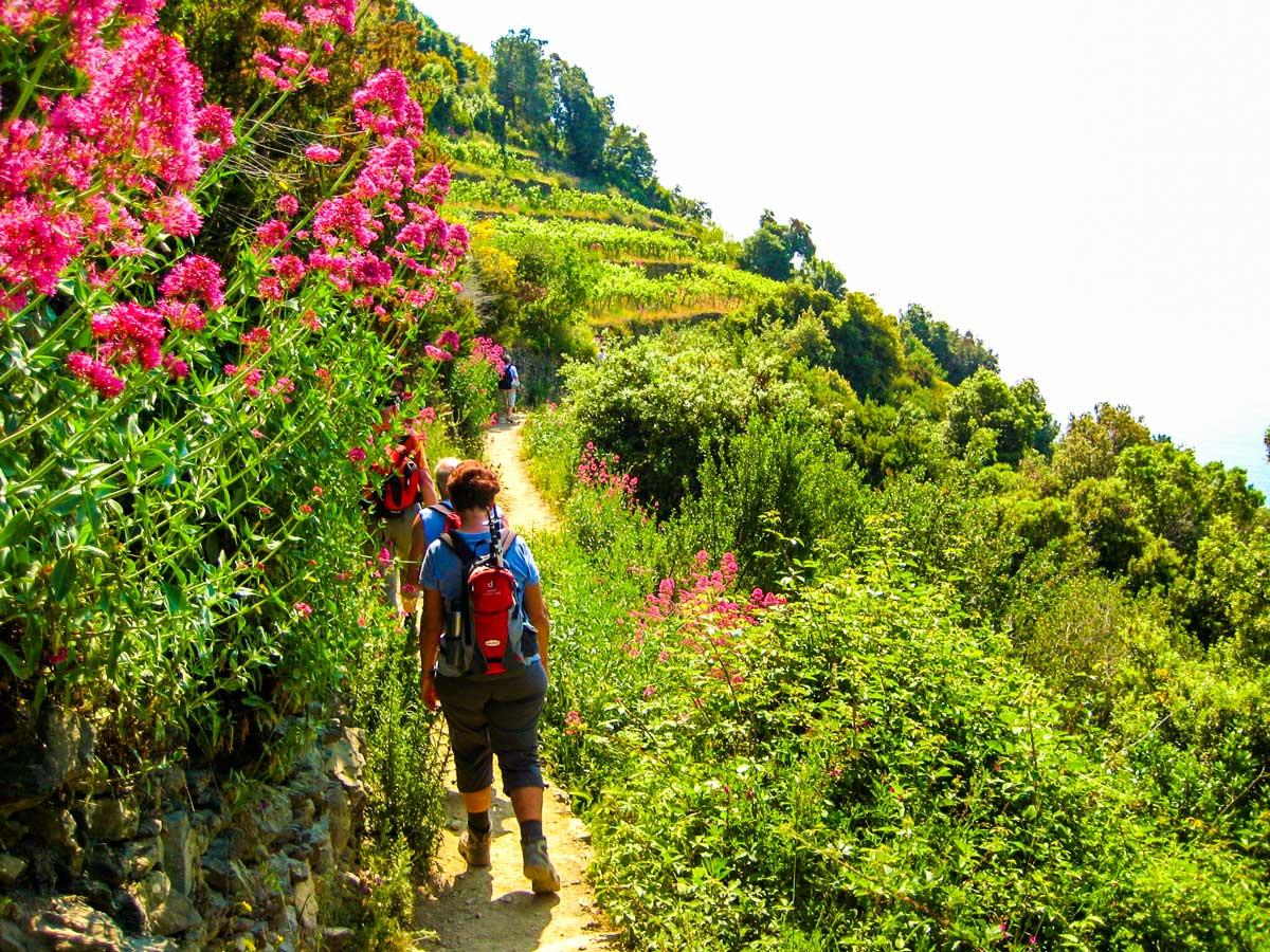Trail of Sestri Levante to Porto Venere trek leads through the lush greenery