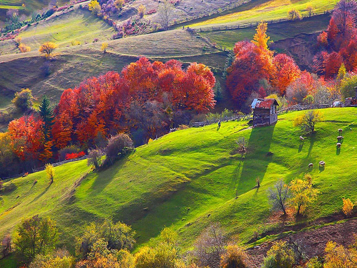 Grand Tour Bulgaria has beautiful views of Rhodope Mountains