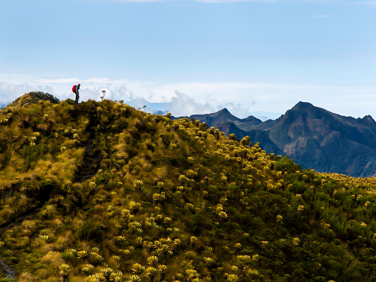 Colombia Off Road Tour is a great trek for adventure lovers seeking to see the best of Colombia
