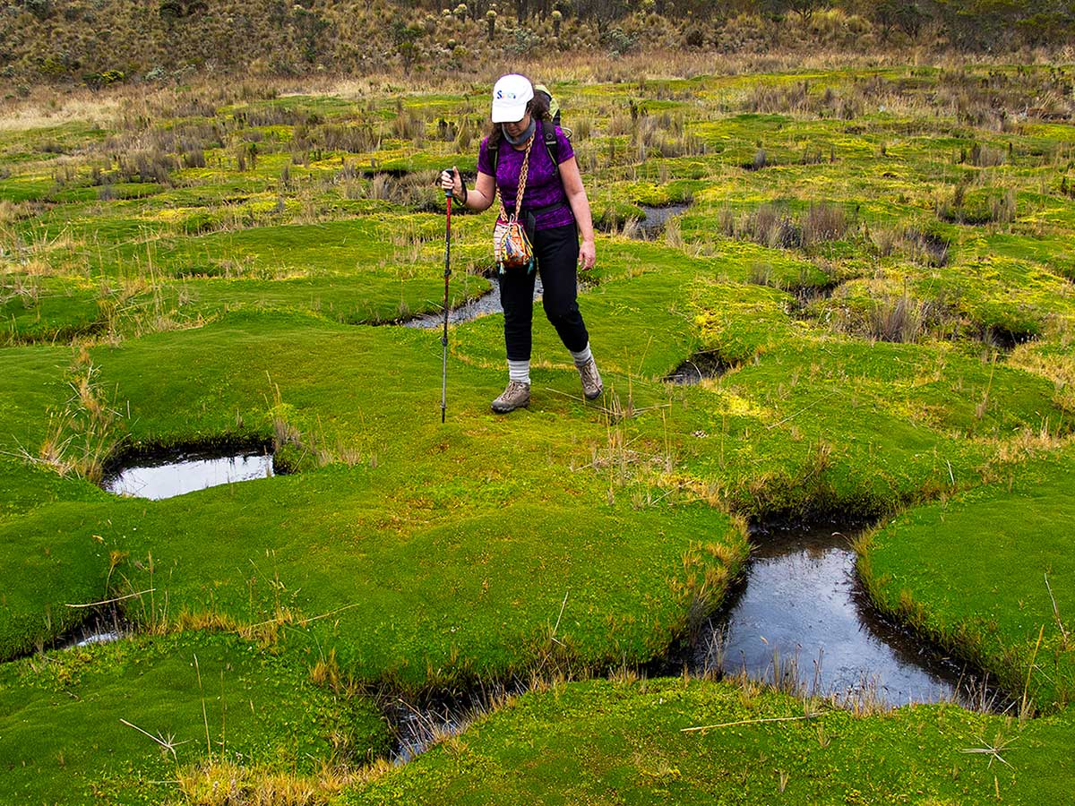 Trekker crossing the water ponds on Paramillo del Quindio Trek