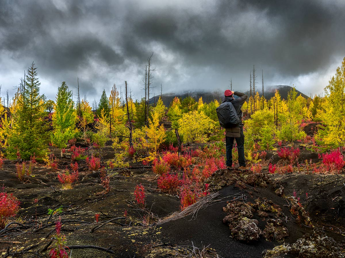 Colorful trees seen on autumn hike of Classic Kamchatka Trekking Tour