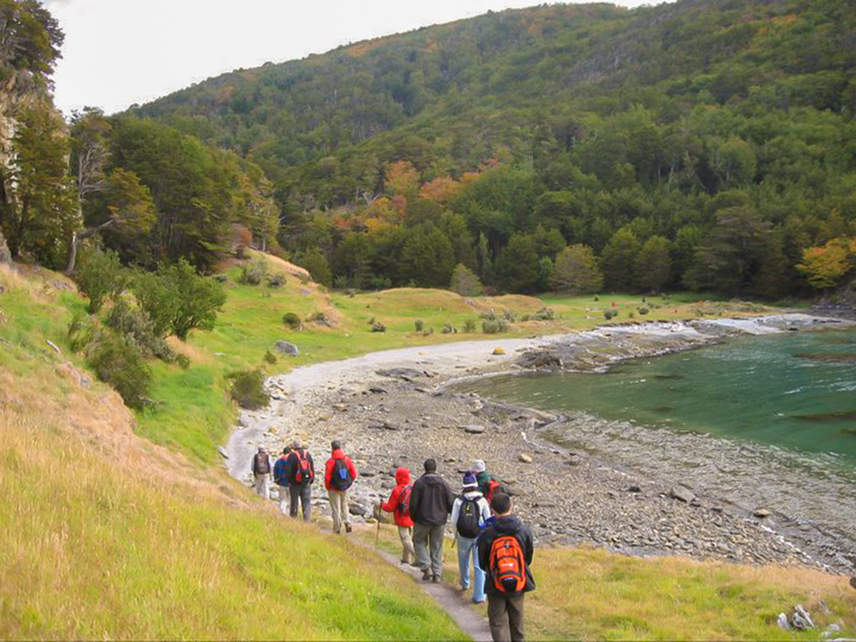 Tierra del Fuego National Park is one of the highlights of Torres del Paine & Ushuaia Adventure Tour in Chilean and Argentinean Patagonia