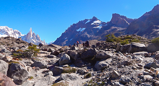 Los Glaciares and Torres del Paine Guided Trekking