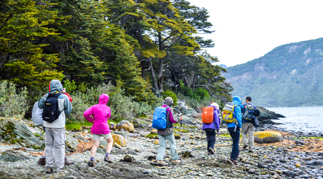Torres del Paine and Ushuaia Trekking