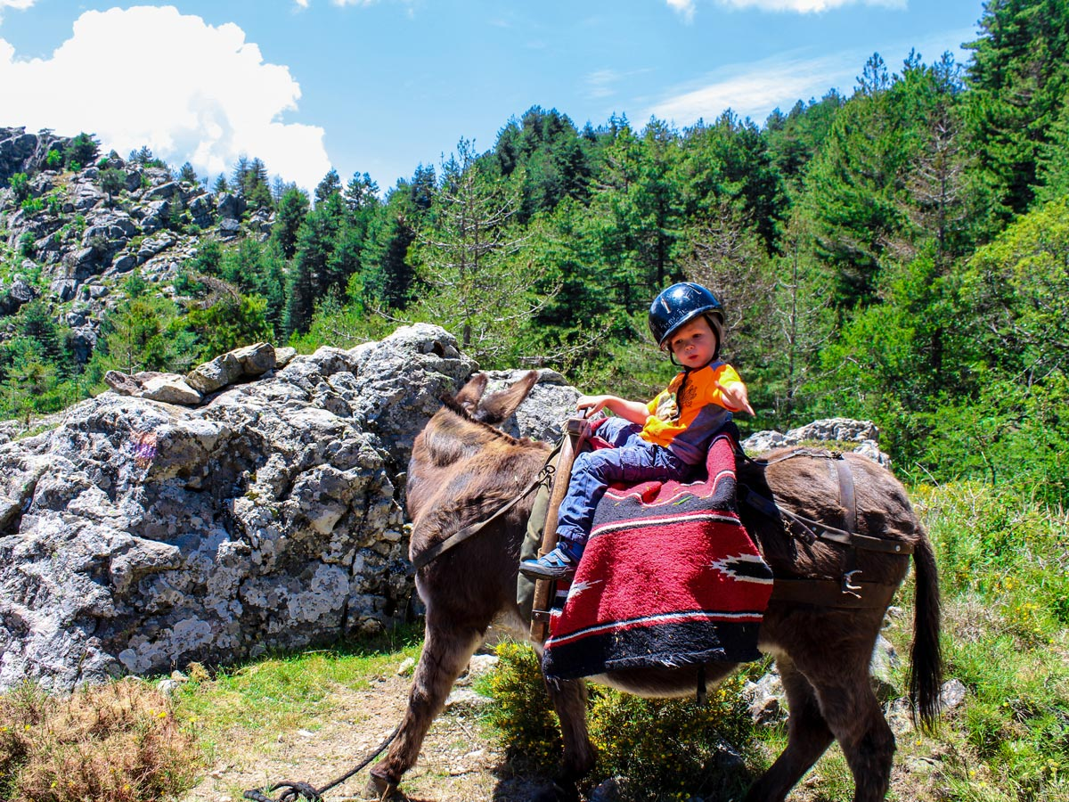 Children love riding donkeys on this amazing guided tour in Corsica Island
