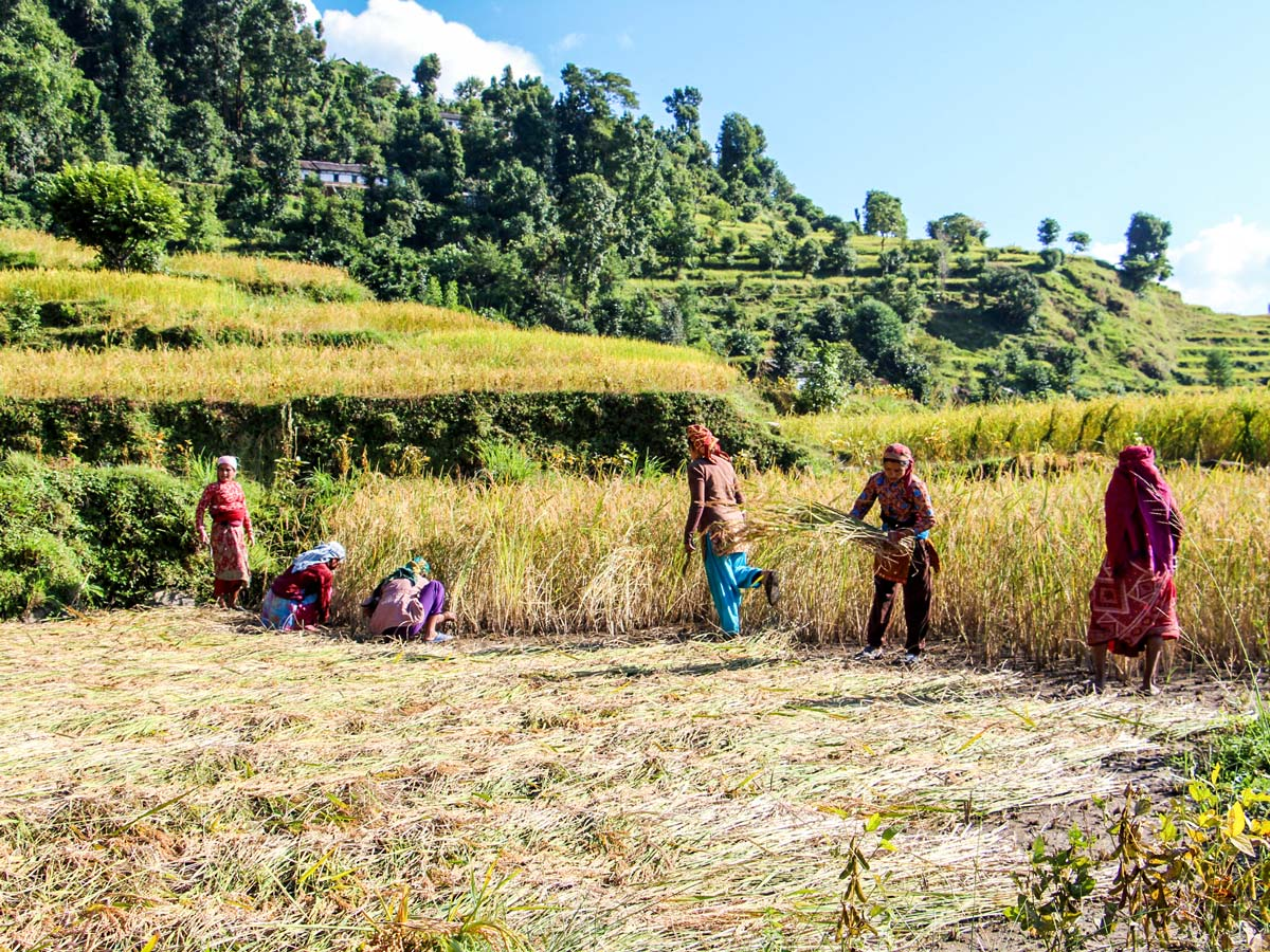 Locals along the Family Adventure Tour route in Nepal