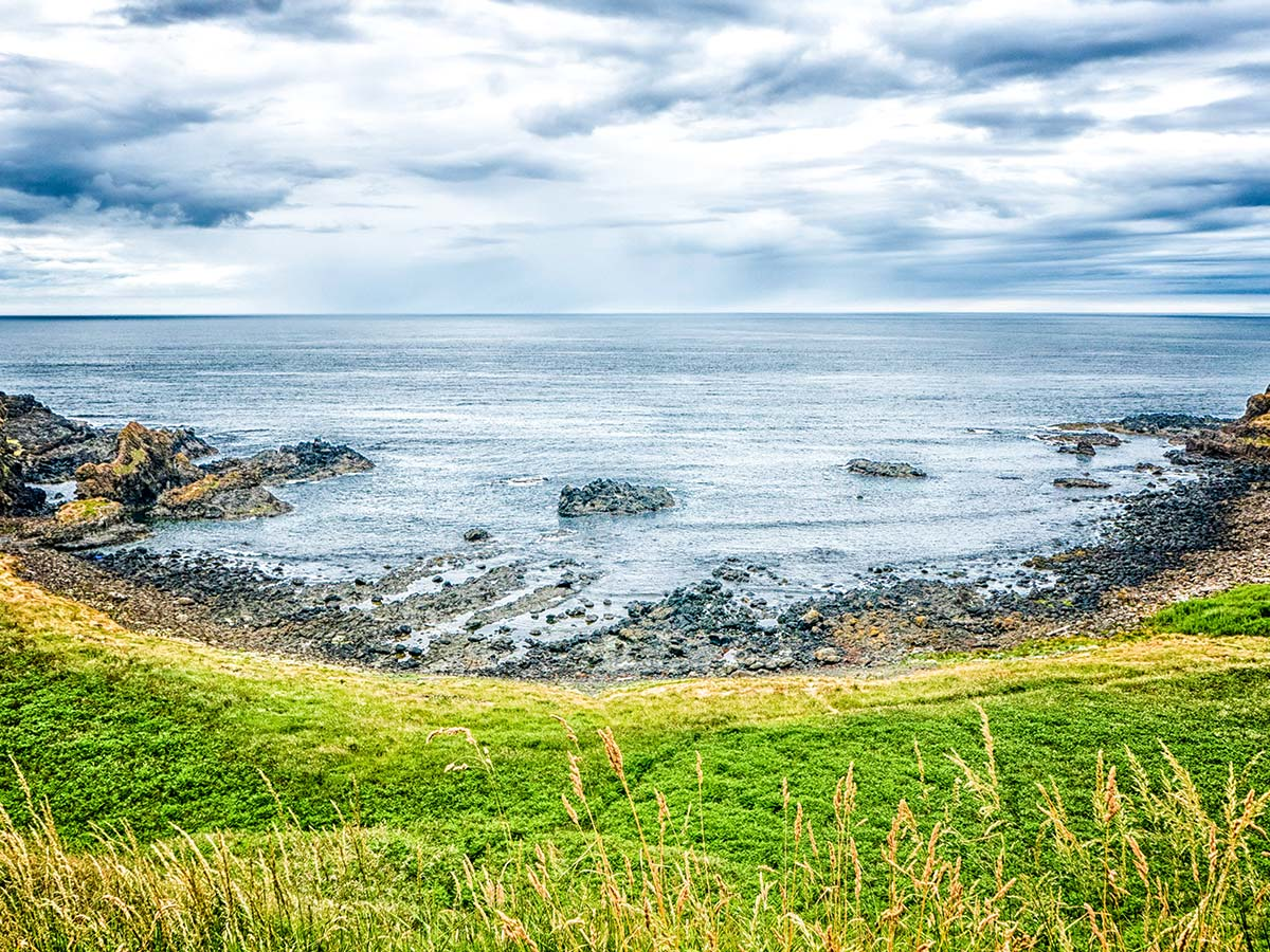 Causeway coast as seen on Coastal Causeway Route & Donegal Trek