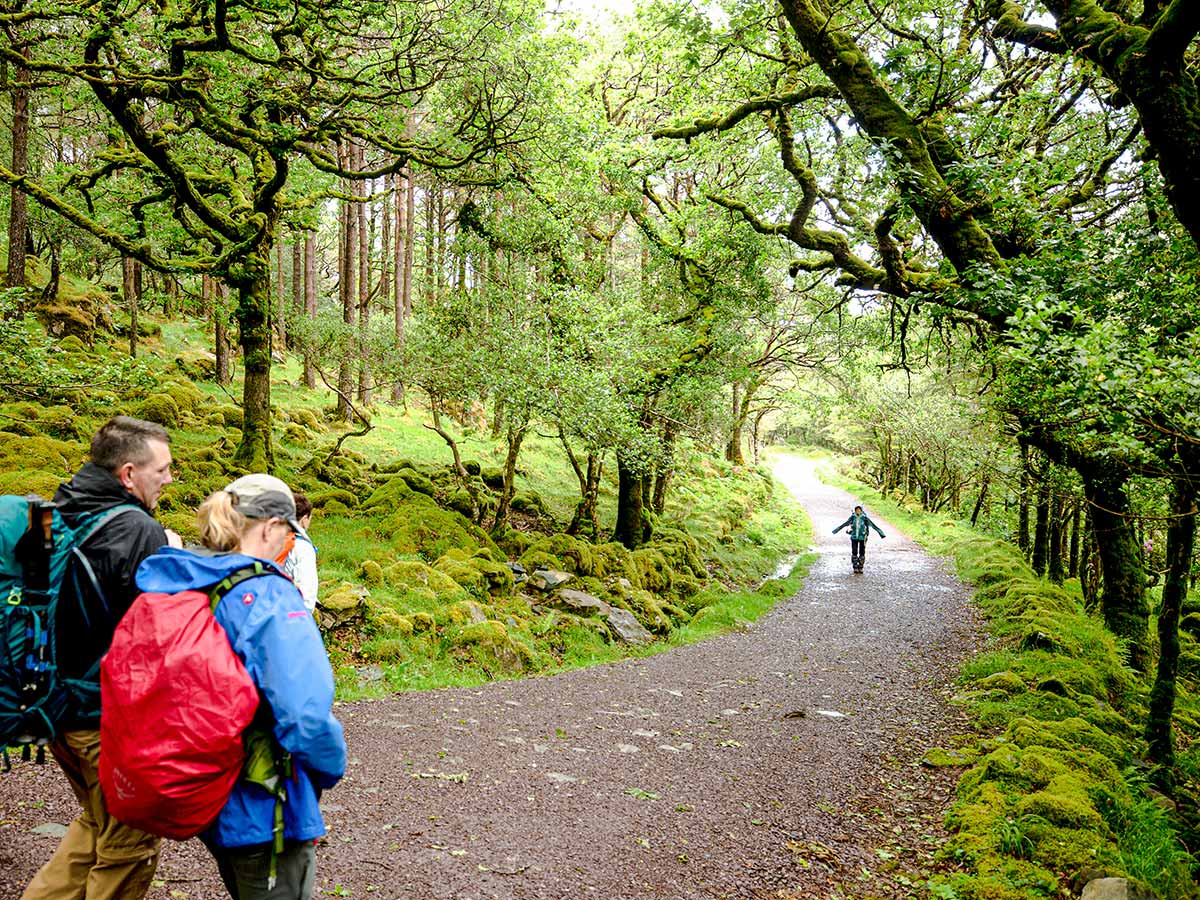 Trekkers enjoing the Deluxe Hiking Kerry Mountains tour in Ireland