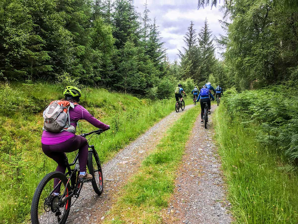 Biking with a guided group through the lush forests in Scotland