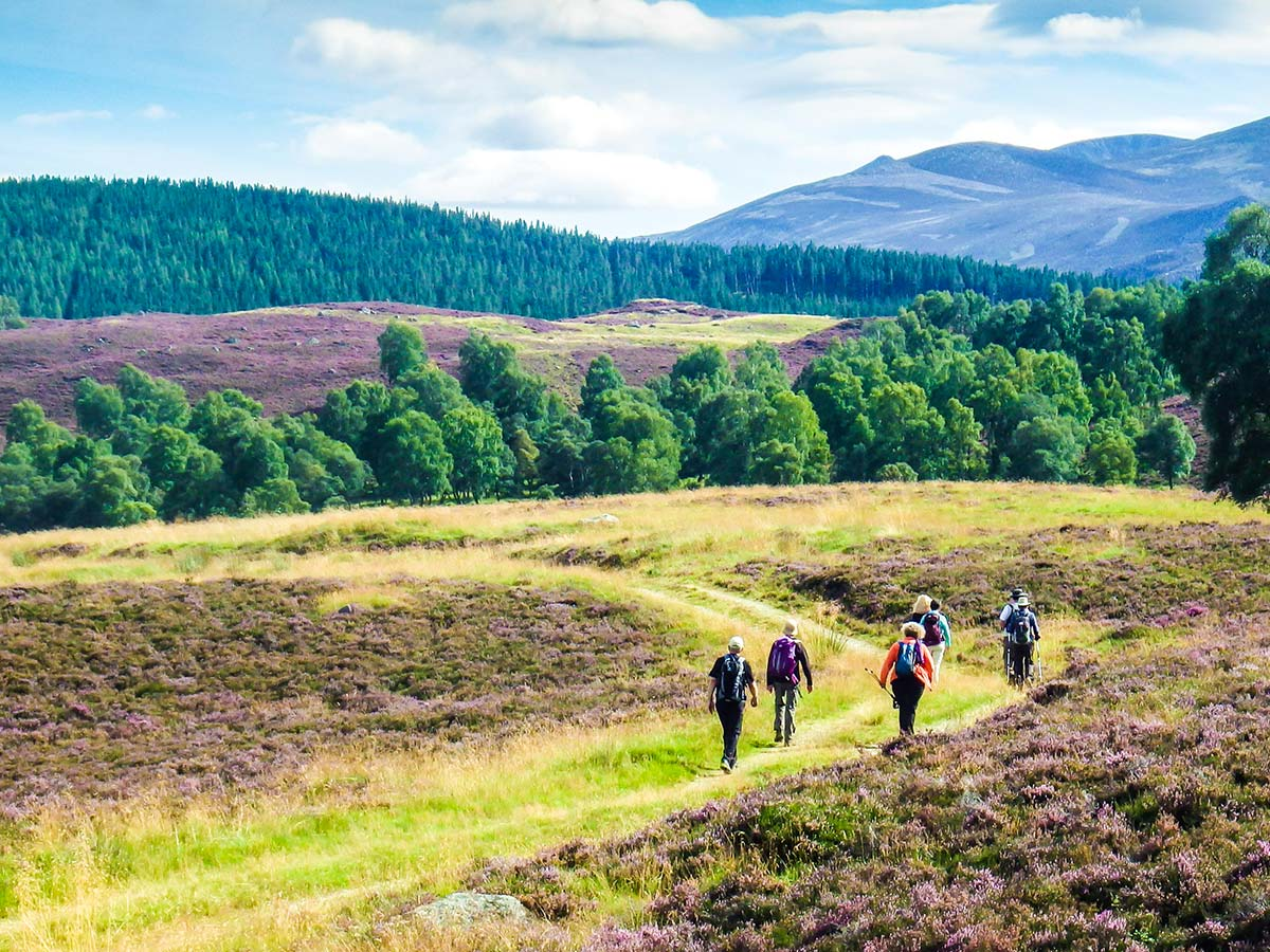 Group of hikers on a National Parks of the UK Guided Walking Tour in Scotland
