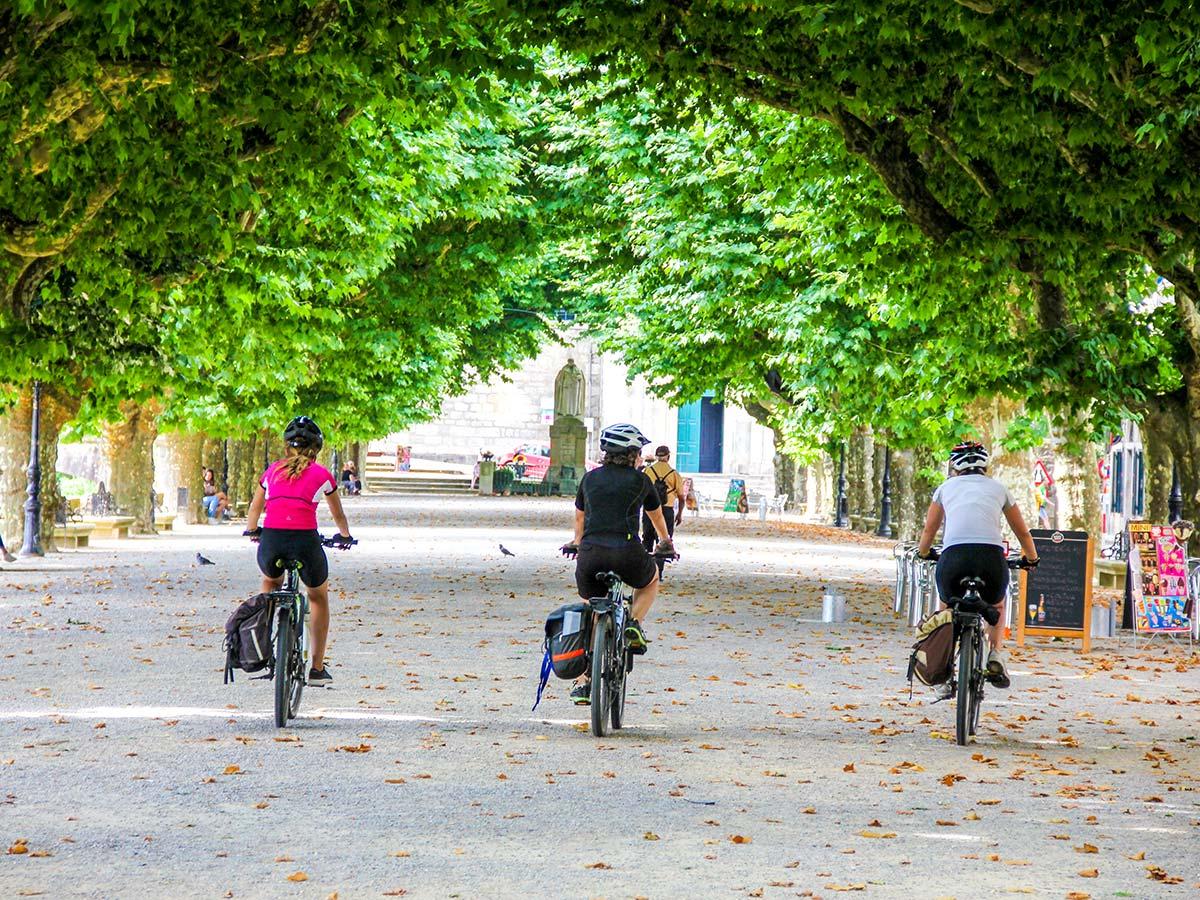 Riding under the lush trees on French Camino Biking Tour