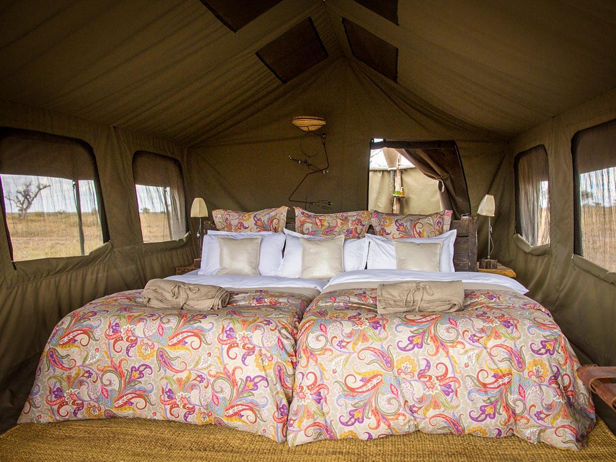 Comfortable tent set for tourists on safari in Tanazania and Kenya
