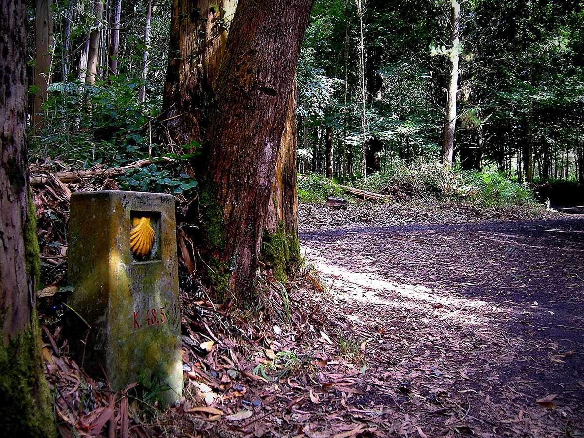 Camino de Santiago sign near the Portuguese Coastal Trail last 100 km