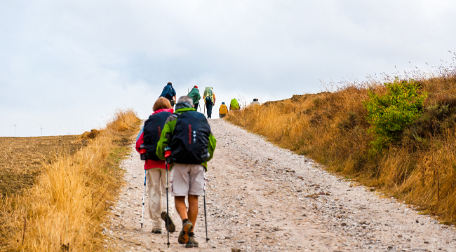 Portuguese Coastal Camino One-week Luxury walk