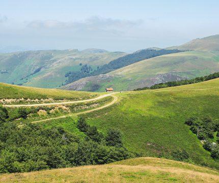 Portuguese Camino to Santiago – Last 100km