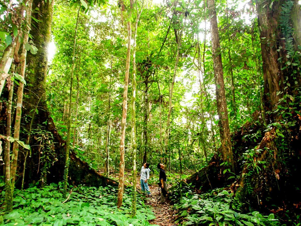 Vietnam Natural Treasure Tour includes visiting the famous Cat Tien National Park