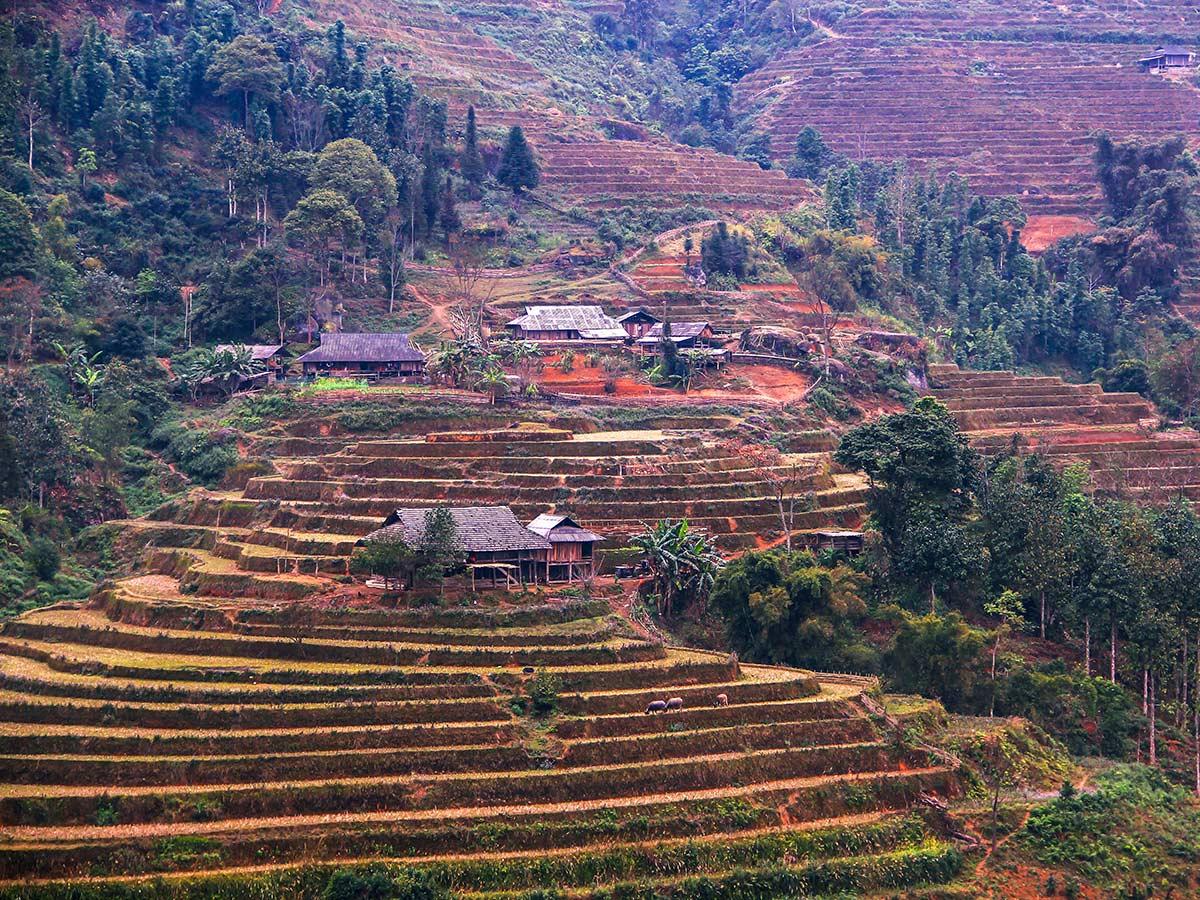 North Vietnam Mountain Trek trekking through the Vietnamese farmlands