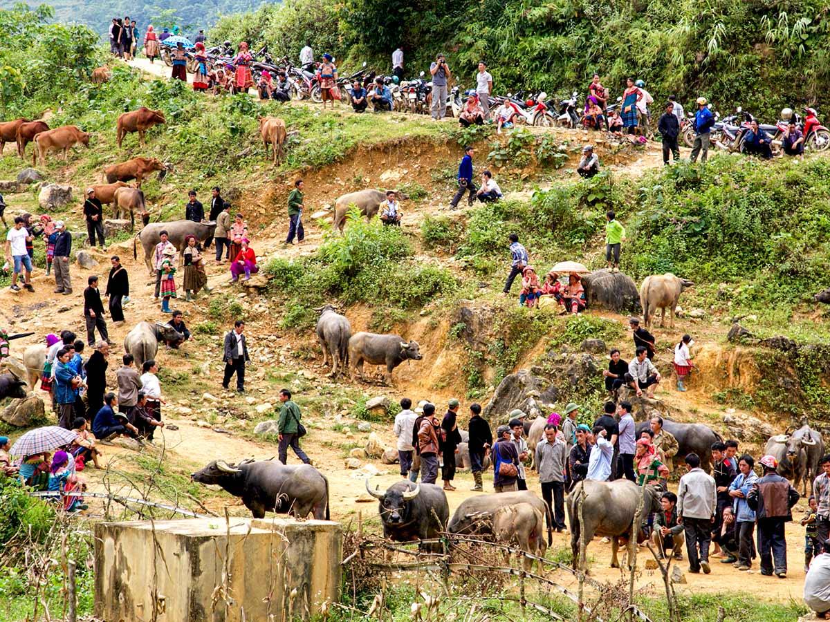 Village in Northern Vietnam as seen on North Vietnam Mountain Trek