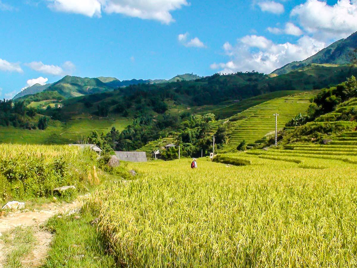 Beautiful farmlands seen on North Vietnam Mountain Trek