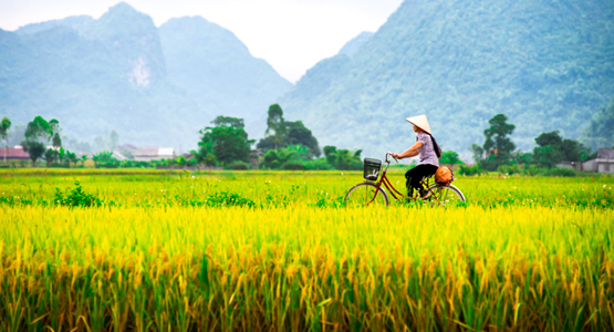 Cycling up to Laos in Vietnam