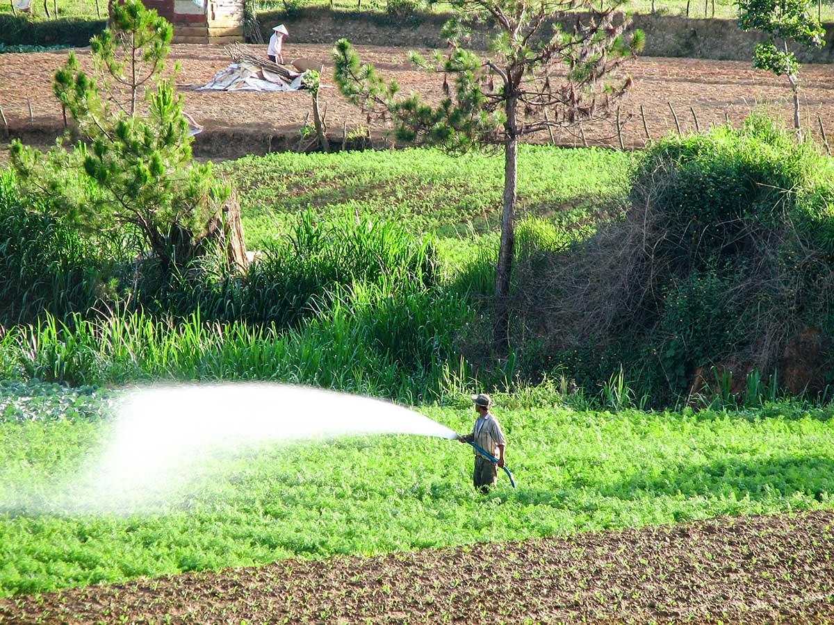 Farmland in Dalat as seen on Vietnam Tropical Journey Tour