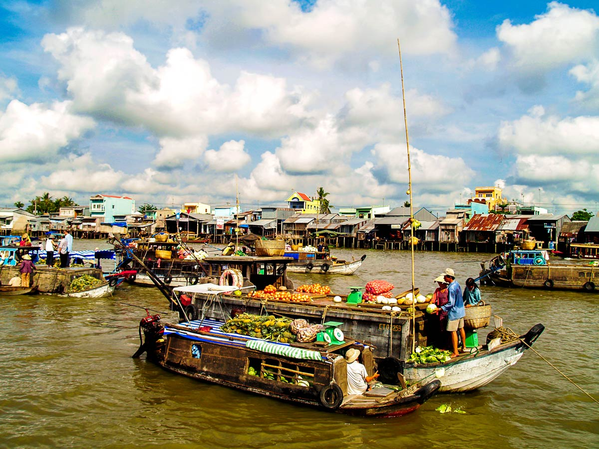Boats in Halong on Soft Eco Adventure with tour operator