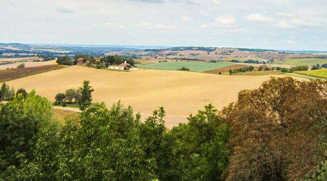 French Camino 100km