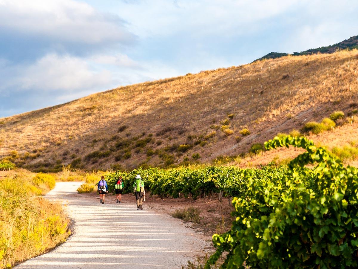 Self guided Camino de Santiago French Way full trek