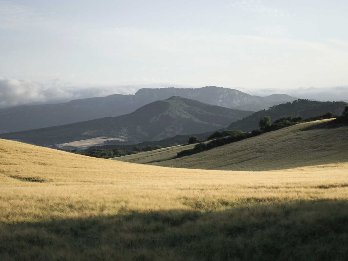 Camino de Santiago French Way full trek leads through beauitful countryside