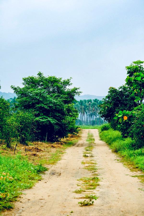 Biking in Western Ghats is a very rewarding experience in Kerala India