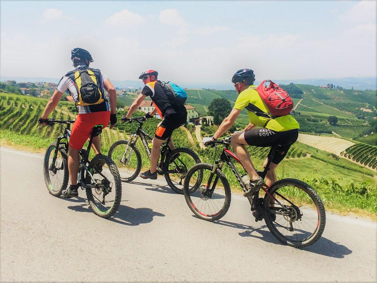 Group of bikers cycling around Alba in Piedmonte on Biking in Piedmonte Tour