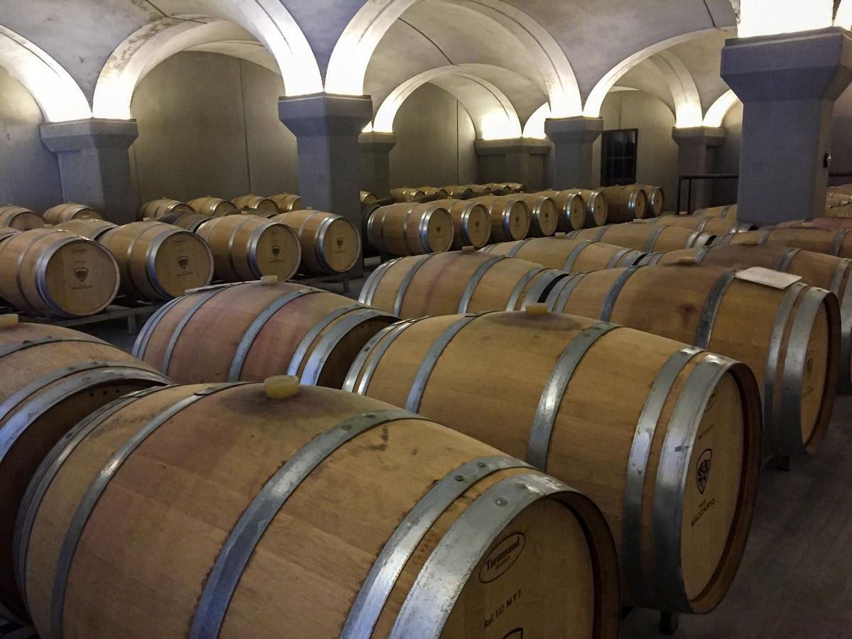 Barolo wine on Biking in Piedmonte Tour