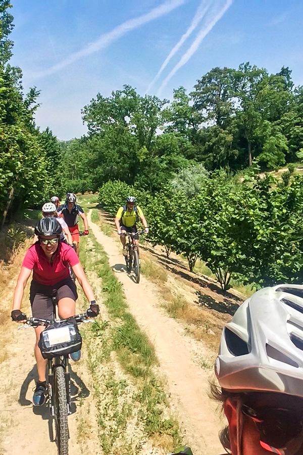 Group of cyclists biking around Alba on Biking in Piedmonte Tour