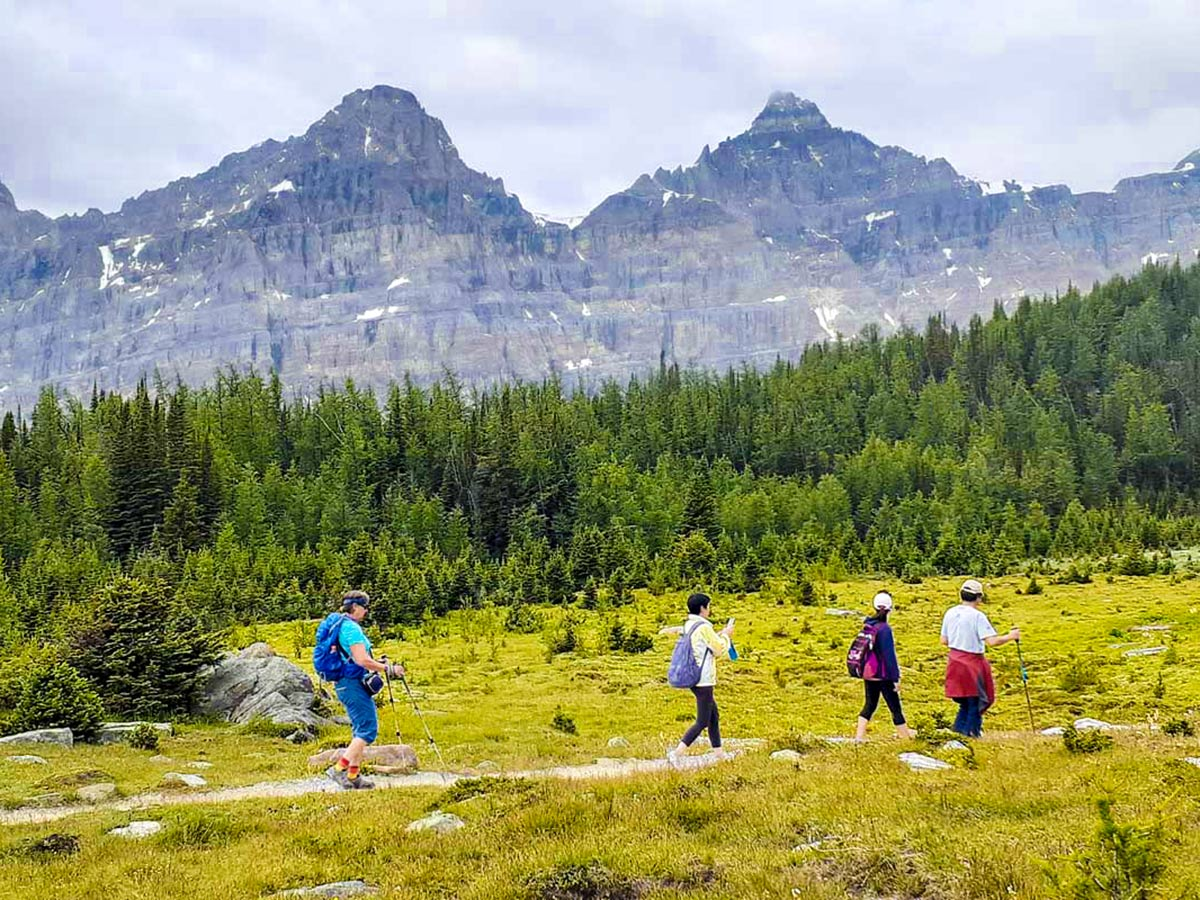 Group with a guide in the Canadian Rockies